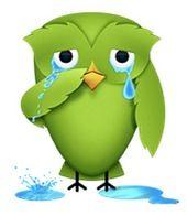Duolingo-crying