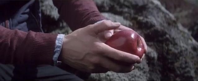 Mmmmm, apples.