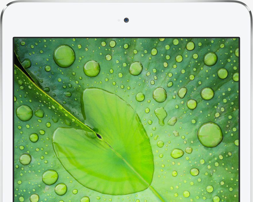 Retina iPad Mini Comes 'Distant Third' In Display Shootout Against Nexus 7, Kindle Fire HDX