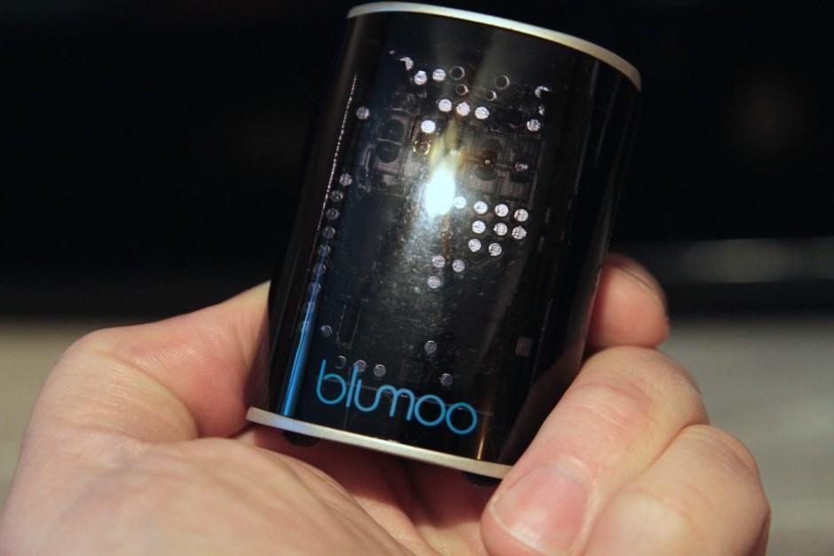 blumoo-2
